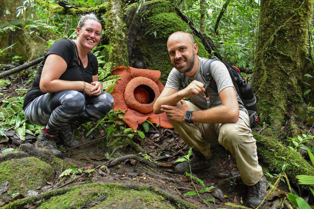 Triumphant: we found the Rafflesia flower