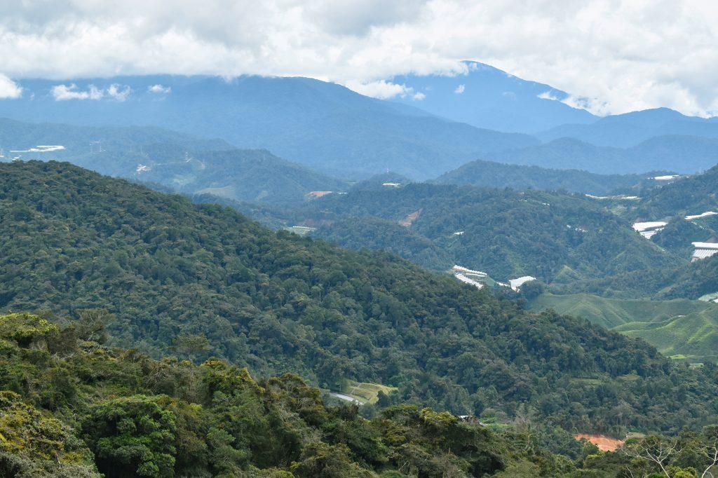 View from Gunung Jasar on Trail 10 near Tanah Rata