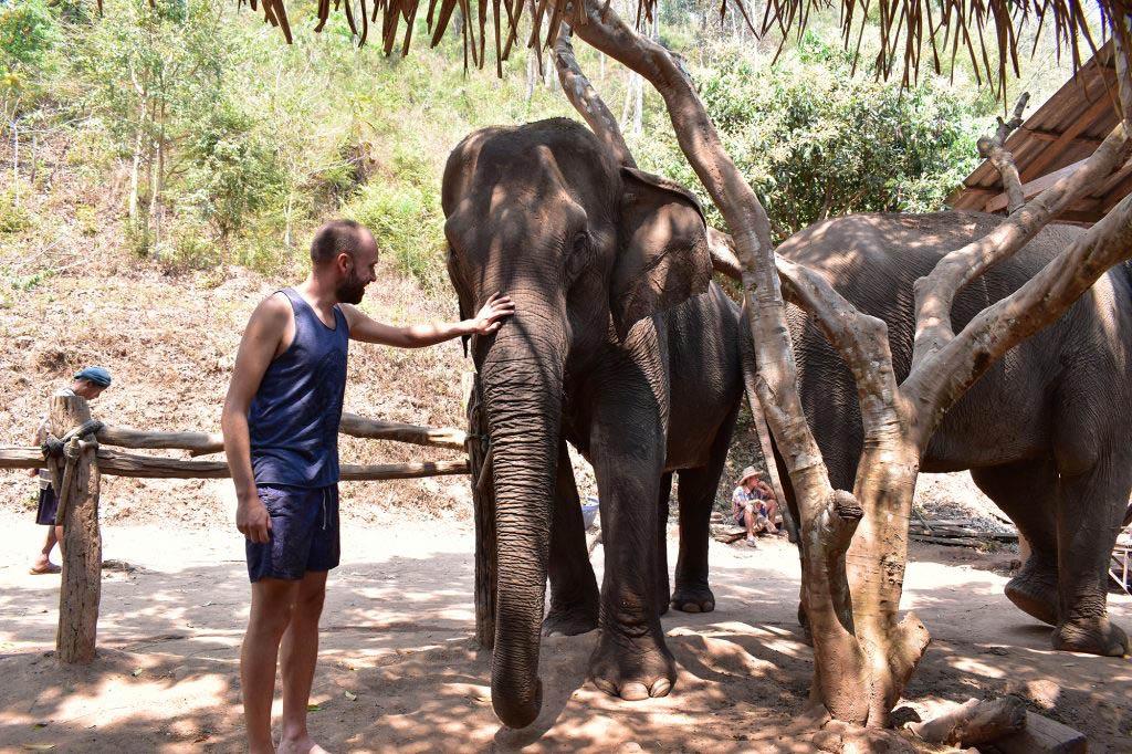Chiang Mai trekking: a stop at an elephant sanctuary