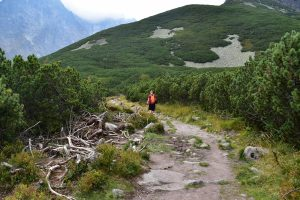 Alex hiking with Zomake bag in the High Tatras