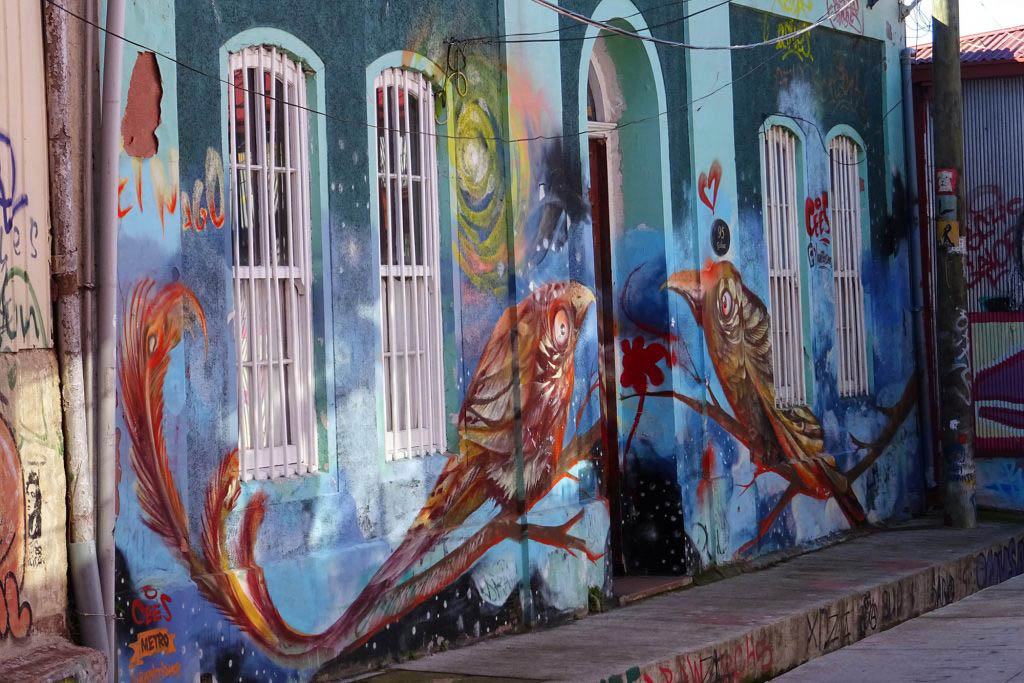 A bird mural painted on the front of a house by local Valparaíso artist Charquipunk