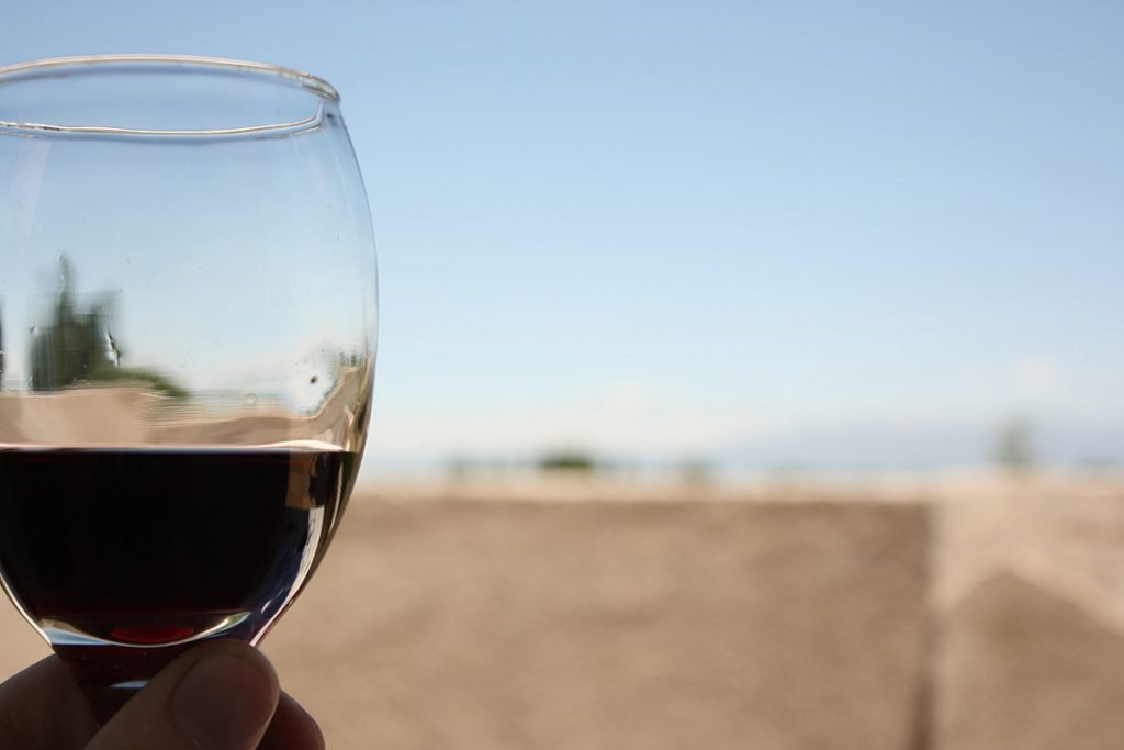 Wine tours Buenos Aires