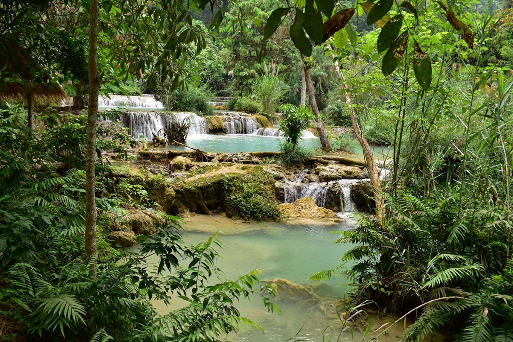 Kuang Si Waterfalls is a must to include in your Luang Prabang itinerary