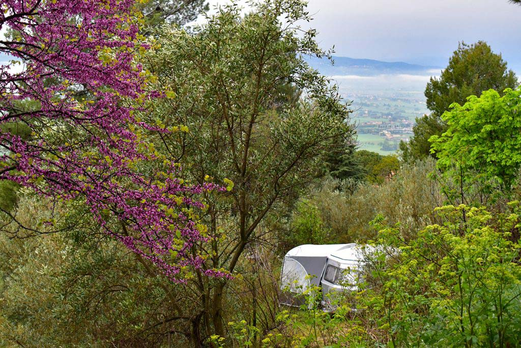 Camping Fontemaggio is spread along the lower slopes of Monte Subasio, just outside Assisi
