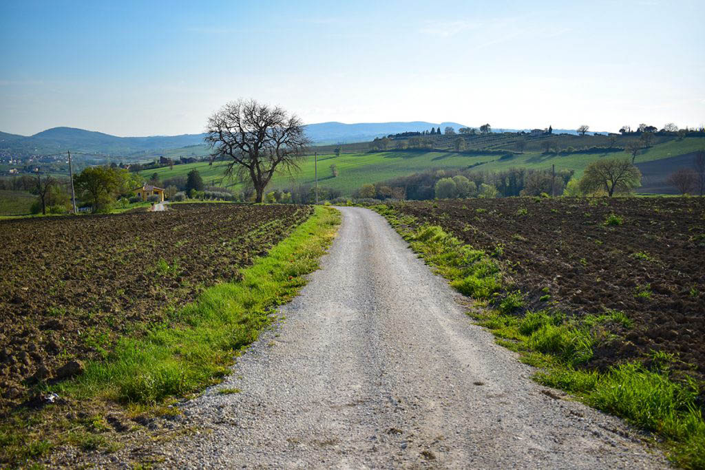 Umbria's landscapes are typified by cultivated land and narrow country lanes