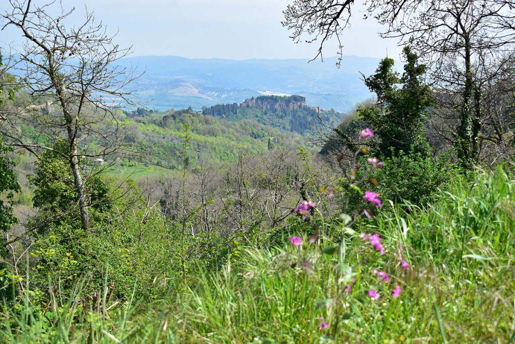 From Madonna Del Latte you can see into the valley of Lake Bolsena, Italy's oldest volcanic lake
