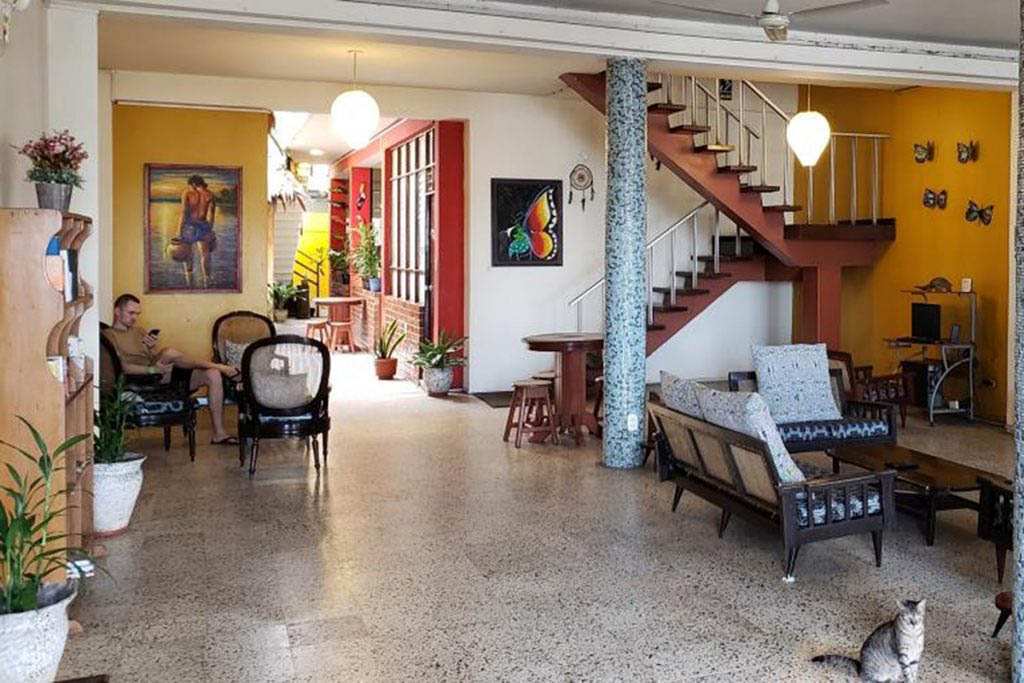 Flying Dog is one of the best hostels in Iquitos for exploring the city and the Amazon jungle