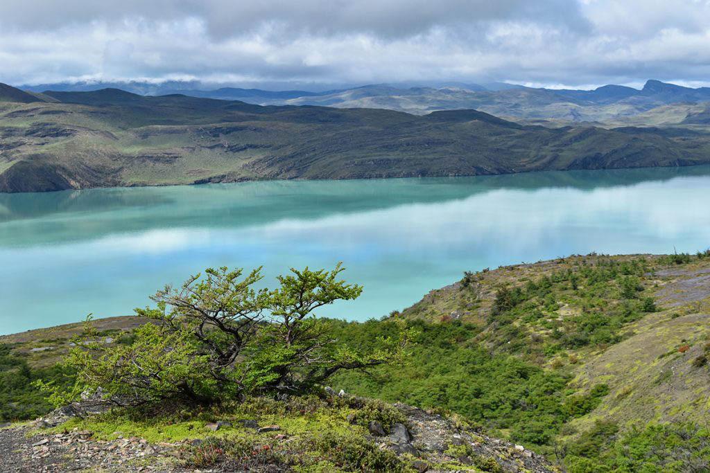 Lago Nordenskjöld Torres Del Paine