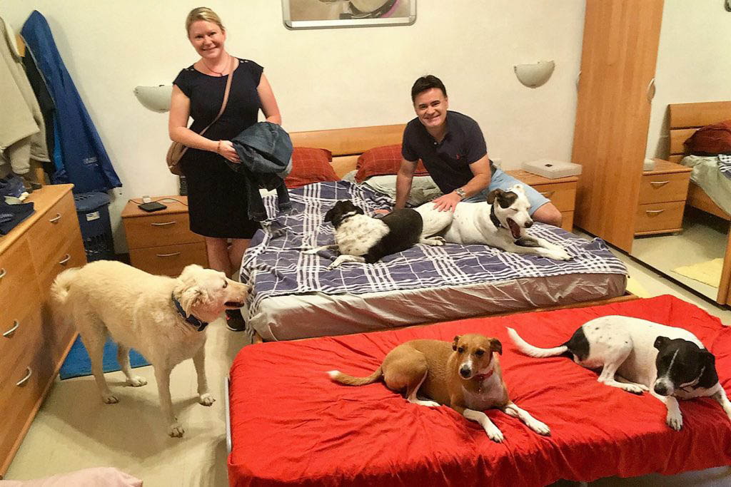 Sarah Blinco and Cooper Dawson on house sit with 9 dogs in Malta