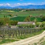 Umbria wineries Italy