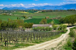 Umbria wineries Italy