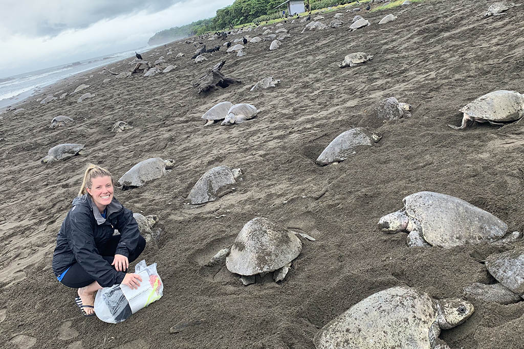 Michelle witnessed the process of arribada, the mass nesting of thousands of sea turtles