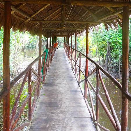 Amazon jungle lodge bridge Peru