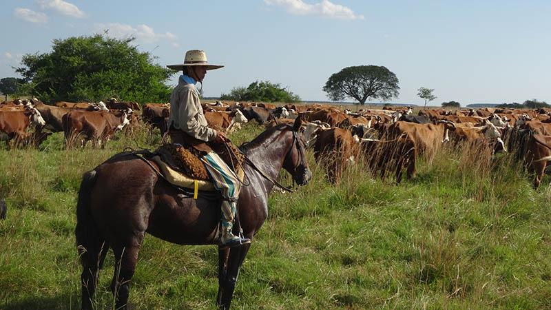 Gaucho ranch Argentina