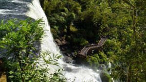 Iguassu Falls Small group tours in Argentina steps view of Iguassu
