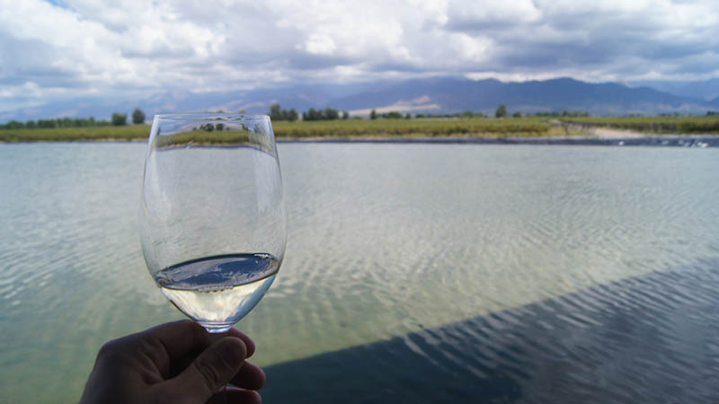 Mendoza wine Argentina