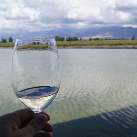 Mendoza wine glass Argentina
