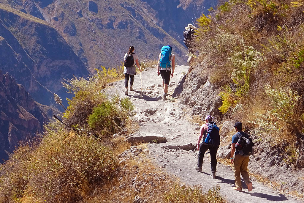 Small group tours in South America Colca Canyon Peru