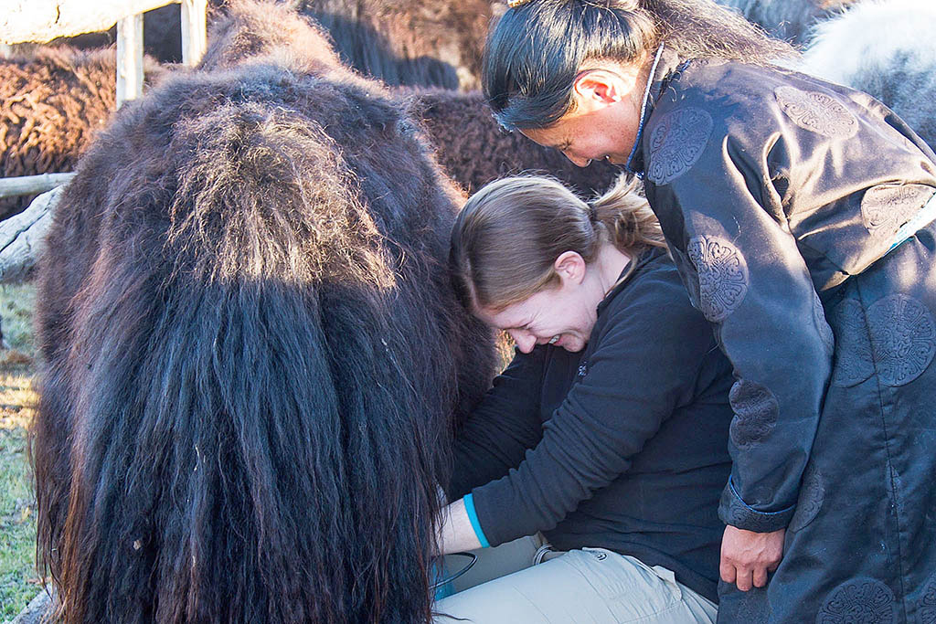 Staying with a nomadic family in Mongolia was a standout experience of Susie's travels
