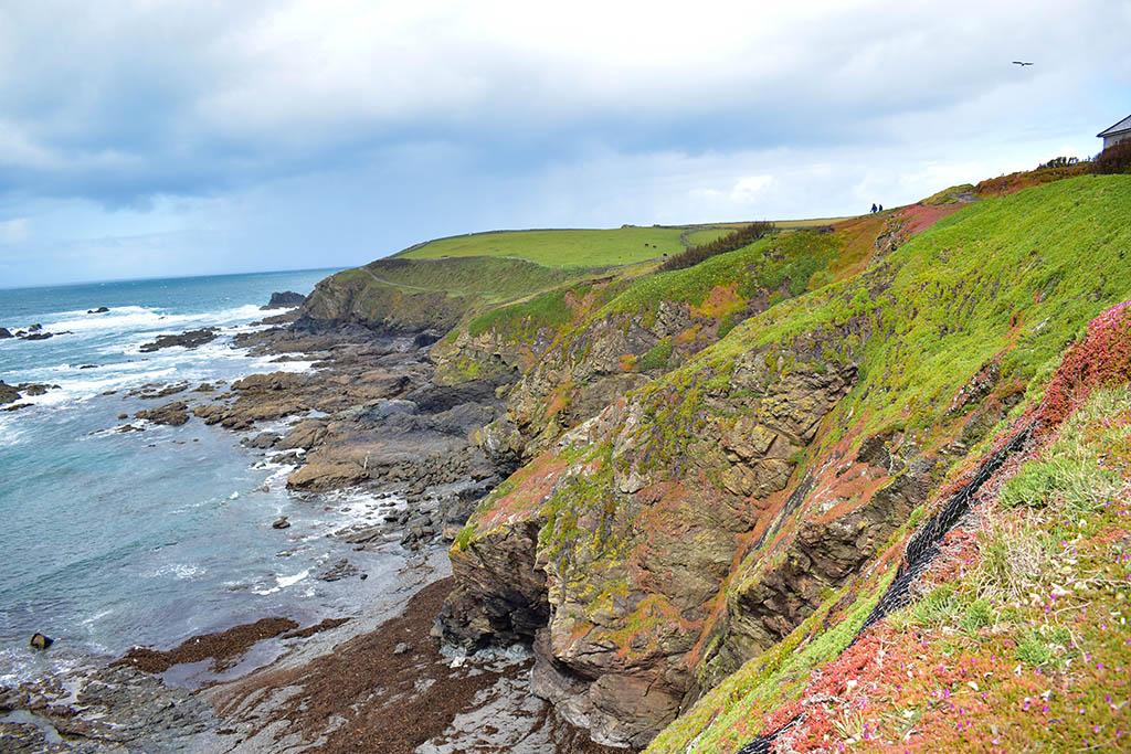 Lizard Point coastline