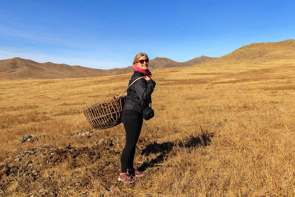 Laura Bannister collecting dung for host family Mongolian Yurt